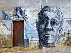 El hombre y el pájaro (John LaMotte) Tags: fachada puerta porta portugal door deterioro decayed dibujo graffiti algarve lagos infinitexposure ilustrarportugal