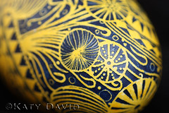 """Sea Snake"" (Katy David Art) Tags: ocean sea black art yellow easter folk snake wildlife egg fine goose anemone wax dye ukrainian eggshell batik beeswax aniline jelllyfish pysanka pysanky"