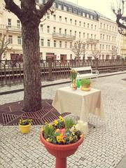 Happy Eastern from Karlovy Vary! (AndreaGerak) Tags: city travel holiday spring europe czechrepublic carlsbad eastern easterneurope tavasz karlovyvary centraleurope hsvt karlsbad