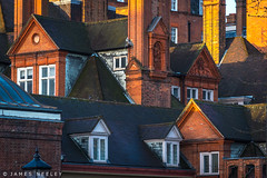 Chimneys, Rooftops and Gables (James Neeley) Tags: london rooftops gables chimneys jamesneeley