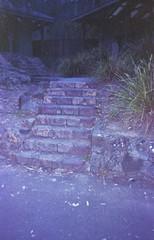 step up (kaylanapier) Tags: green grass way walking path walk steps stepping pathway steppingup