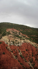 Atlas colors (nyoz_fr) Tags: travel mountains cat morroco maroc atlas