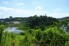 kreo island (Iwan Madari) Tags: indonesia landscape dam waduk wadu semarangindonesia jatibarang madariphotowork semarang2016 madariphotowork2016