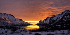 Ersfjorden in Norway (Kurt Are Larsen) Tags: sunset norway natur goldensunset solnedgang troms troms 2016 ersfjorden visittroms fujifilmxt1