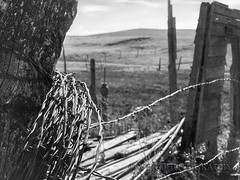 Time Passages (VFR Photography) Tags: wood bw abandoned monochrome fence landscape landscapes blackwhite wooden wire decay northdakota nd barbedwire weathered fencing homestead barbwire remains remnants decaying textured homesteads greatplains trotters unincorporated northernplains goldenvalleycounty peacegardenstate formerwellpumphouse
