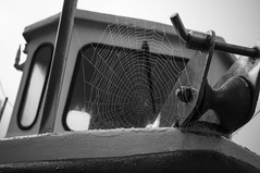 In the cold light of morning ... (stopdead2012) Tags: monochrome boat cobweb dew portsmouth