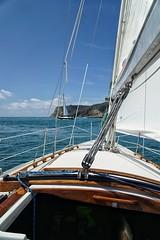 Sailing in San Deigo (aaronanderson5) Tags: california water sailboat race outside boat spring sailing sony racing boating westcoast blueskys sandeigo sotherncalifornia