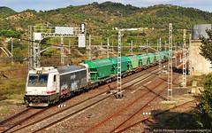 Encreuament amb avanament (tunel_argentera) Tags: train tren railway 253 ferrocarril renfe mar adif falset mercancas mercaderies fosfat