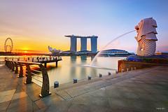 Lion (harrysio) Tags: longexposure sunrise nikon singapore d800 merlionpark singaporeflyer marinabaysands