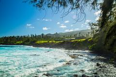 Maui, Hawaii 2016 (pfcigor) Tags: ocean travel sea hawaii maui hana