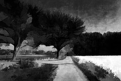 before the storm (j.p.yef) Tags: trees bw storm weather germany landscape country digitalart felder sw landschaft darksky yef dunklerhimmel velmede peterfey jpyef