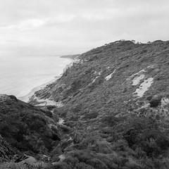Torrey Pines State Nature Reserve (Stephen A. Wolfe) Tags: california blackandwhite film beach 35mm landscape sandiego pacificocean canoscanfs2710 torreypinesstatereserve nikonfm3a kodakhc110 adobelightroom film:iso=100 agfaagfapanapx100 film:brand=agfa developer:brand=kodak developer:name=kodakhc110 film:name=agfaagfapanapx100 swolfe2000 adobelightroomcc httpstephenwolfephotography filmdev:recipe=10741