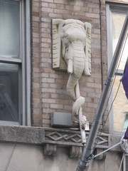 Elephant Metal Gargoyle 2016 NYC 8577 (Brechtbug) Tags: above street new york city nyc sculpture elephant window animal animals statue metal stone zoo hotel with circus lexington pachyderm off gargoyle uptown trunk below gargoyles avenue 2016 pachyderms 04242016