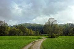Spring with a little snow (Claude@Munich) Tags: trees green germany bayern bavaria spring path oberbayern upperbavaria bume springtime springsnow frhling pfad frhjahr dietramszell claudemunich aprilschnee frhlingsschnee dietramszellerwaldweiher