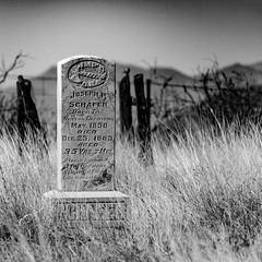 record of life (aramirezpho) Tags: christmas arizona monochrome cemetery germany blackwhite 1800s nassau gravemarker diedonchristmas