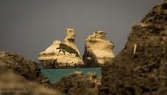 torre del orso (paolotrapella) Tags: italy beach water del torre acqua puglia spiaggia orso sabbia