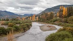 Otoo (hhugo2) Tags: rio otoo alamos estero araucana cunco