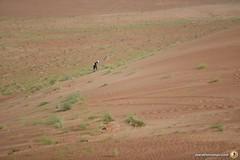 3-Oman-Desert-Marathon-Day-4_5970