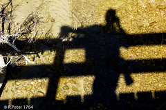 summer shadow (R-Pe) Tags: show camera abstract canon photo nikon foto fotografie photographie sony picture pic exhibition peter gift bild geschenk ausstellung aufnahme melancholie 1764 rpe rbi 1764org www1764org