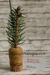NewYearFavor_06w (Morgana209) Tags: handmade newyear pino favor capodanno anno segnaposto nuovo creativit sughero