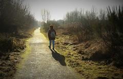 21480 (benbobjr) Tags: uk greatbritain england english abandoned way birmingham rust ruins unitedkingdom britain path gb british footpath westmidlands pathway walsall birminghamuk midlands publicfootpath bridle greatwesternrailway rushall beeching beechingaxe londonandnorthwesternrailway owwr southstaffordshireline southstaffordshirerailway oxfordworcesterandwolverhamptonrailway southstaffordshirerailwayline southstaffordshiretrainline