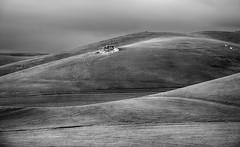 Coast of Green - bw (Joe Josephs: 2,600,180 views - thank you) Tags: california sunset blackandwhite landscape landscapes dusk fineartphotography blackandwhitephotography californiacentralcoast travelphotography californialandscape outdoorphotography fineartprints joejosephsphotography