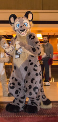 DSC_2043 (Acrufox) Tags: midwest furfest 2014 furry convention december hyatt regency ohare rosemont chicago illinois acrufox fursuit fursuiting mff2014