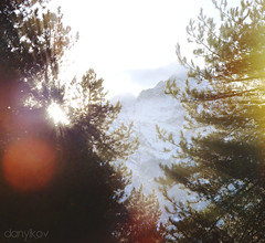 992 (VDanylko) Tags: morning trees italy sun mountains alps rays