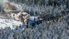 Steam train in the forest (Juergen Huettel Photography) Tags: wood schnee snow forest train germany deutschland smoke eisenbahn zug steam brocken wald sunbeam harz wernigerode