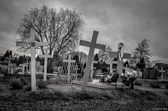 les croix de bois (Patrice Dx) Tags: mort tombe cimetire