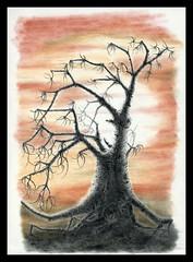 Tree (Karwik) Tags: trees tree pencil pencils drawing pastel pastels crayons drzewo owek rysunek olowek