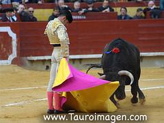 CASTELLN - Feria de la Magdalena 2016 (Los toros desde el Mediterrneo) Tags: cayetano zalduendo elfandi alejandrotalavante feriadelamagdalena2016