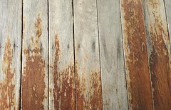 46/366 Faded floorboards #brisbane #home #queenslander #366days #366 #project366 (bartman_6) Tags: home brisbane queenslander 366 366days project366
