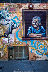 New York Street Art (jomak14) Tags: streetart newyork panasonic queens astoria g2 microfourthirds wellingcourtmuralproject lumixgvario1442f3556