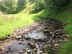 Thursden Brook
