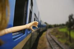 Passeio de trem - 5