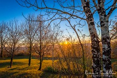 Golden Hour (Romain Pradellou) Tags: sunset nature automne correze coucherdesoleil limousin