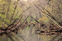 River1 (jb5860) Tags: artisticphotos bestartistic jb5860