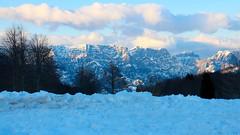 IMG_9524 (formobiles.info) Tags: panorama strada tetto neve bianca sole montagna sci paradiso terrazzo pordenone calda panna cioccolata piancavallo aviano bellissimo pieno soffice cumulo innevata cumuli pulita spiovente lucernari nevischio instagram