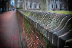 Timing in my world. (Igor Danilov) Tags: life street blur brick philadelphia wall 35mm march spring nikon warm dof view bright bokeh pov pennsylvania walk think belief mind thinking f18 heavy opinion d90