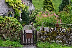 English charm (Blue sky and countryside.) Tags: park old english chickens garden boot gate pretty pentax district character derbyshire cottage peak national limestone charming drystonewalls timeless