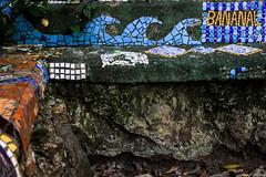 Bananal Trail - Niteroi (Julho Fraga) Tags: art bench arte banco