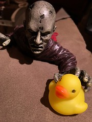 Day 121 of 366 - Zombie Duck (sluggoman) Tags: zombie indoor day121 366days 366daysproject