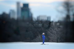 Top of the Ski Hill (A Great Capture) Tags: park blue winter snow toronto ontario canada ski cold sport kid focus photographer skiing dof child top parks canadian earl february activity bales northyork selective skihill on agc 2016 ald torontoparks ash2276 adjm lhiver ashleylduffus wwwagreatcapturecom agreatcapture earlbalesskihill