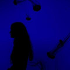 Ripley's Aquarium- Toronto, Canada (Hannah Vickers) Tags: travel blue canada me silhouette self canon aquarium jellyfish personal outline torontocanada ripleysaquarium
