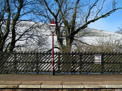 Happy Fence Friday! (pefkosmad) Tags: uk railroad morning vacation england holiday snow tree station weather train fence ride outdoor famous sunday platform railway lamppost cumbria edenvalley kirkbystephen settletocarlisle