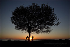 Crescent Beach 006 BC web (DAMON WEST www.damonwestphotography.com) Tags: sunset canada tree beach kids children bc britishcolumbia crescentbeach whiterock greatervancouver insidevancouver vancitybuzz viawesome