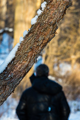 Branch, snow remnants and a figure (PJMixer) Tags: park people snow toronto tree landscape spring nikon 52weekproject