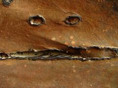 Concretion Face (Dru!) Tags: usa face pareidolia utah ut sandstone desert navajo capitolreef utahtrip concretion sheetsgulch