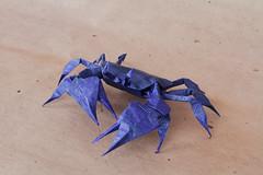 Cangrejo - Crab (JuAnSe! origami) Tags: art paper origami juan crab cangrejo landeta